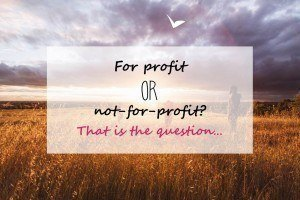 Profit or non profit