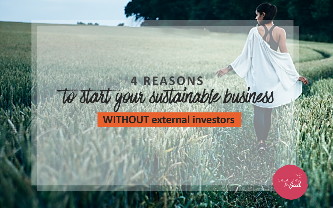 4 reasons to start your sustainable business WITHOUT external investors