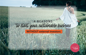 sustainable business without external investors