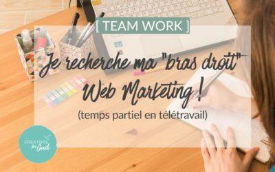 Je recherche ma «bras droit» Web Marketing ! (temps partiel en télétravail)